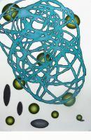 Conplex-IV-pastel-70x50-cm-2010