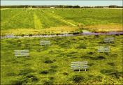 Zien-20-wooden-fences-detail-2000